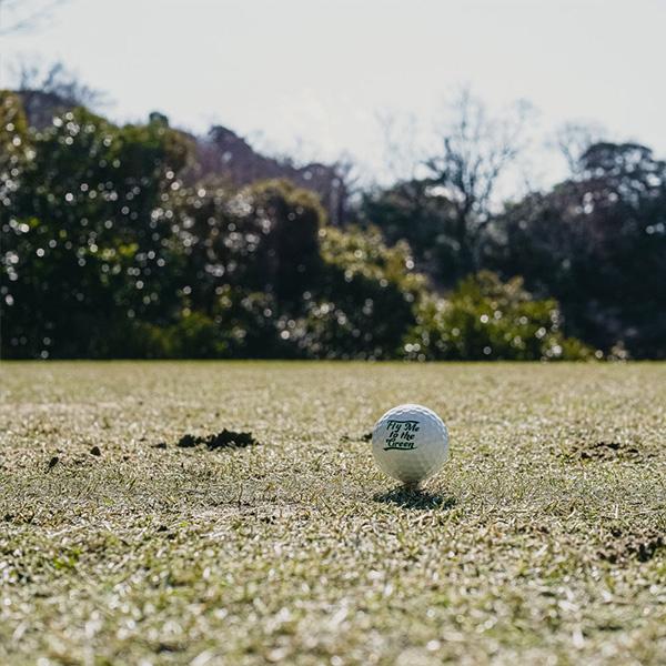 キャプテンズヘルム ゴルフ   CAPTAINS HELM GOLF : Cph/Golf