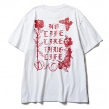 ソフトマシーン シャクール  tシャツ