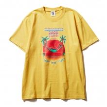 ソフトマシーン サンセット  tシャツ